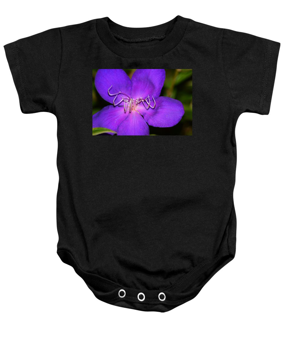 Soft Clementis Baby Onesie featuring the photograph Soft Clementis by Warren Thompson