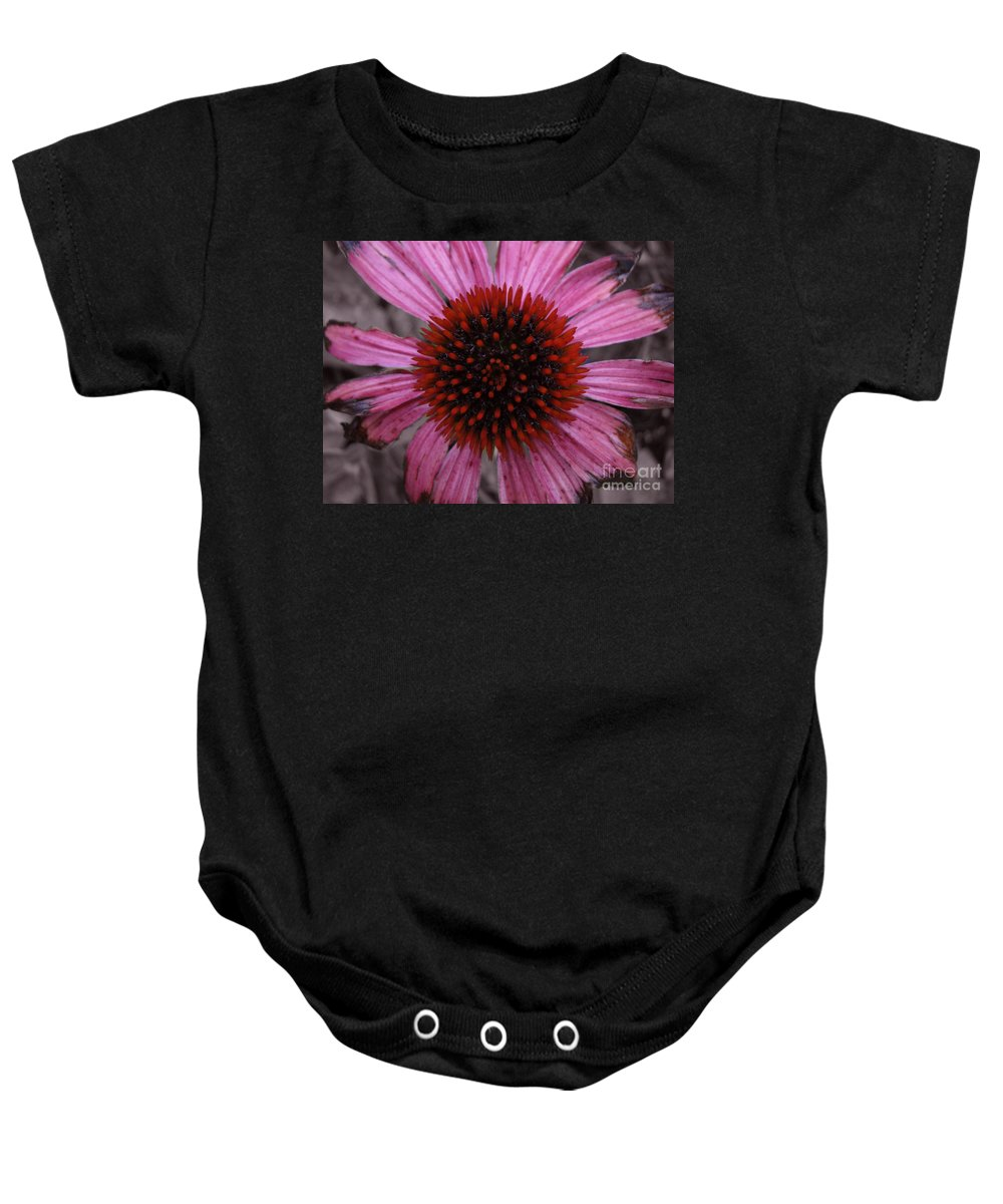 Echinacia Baby Onesie featuring the photograph Soul's Edges by Amanda Barcon