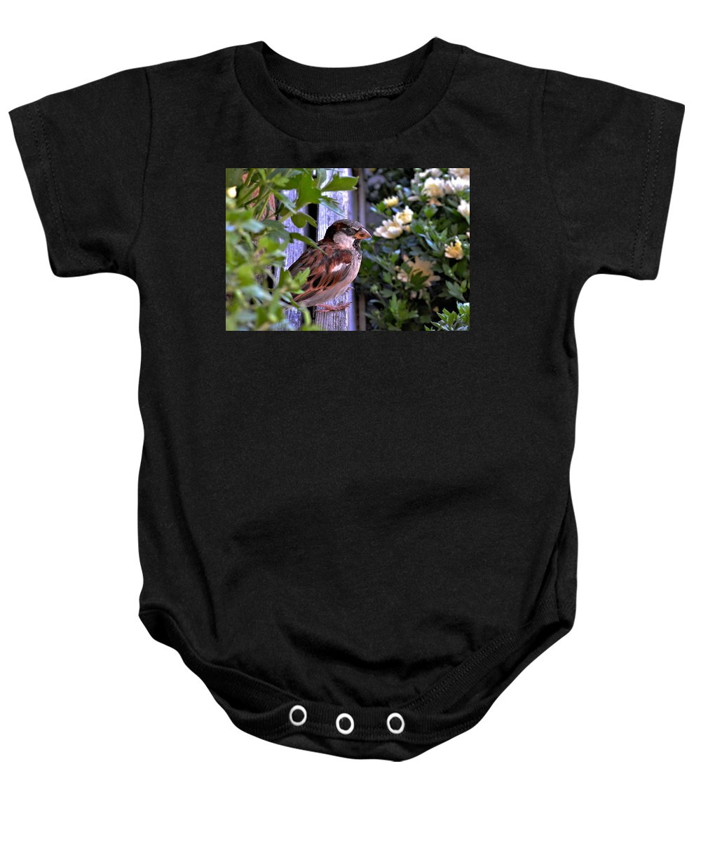 Sparrow Baby Onesie featuring the photograph Sparrow In The Shrubs by William Lowe