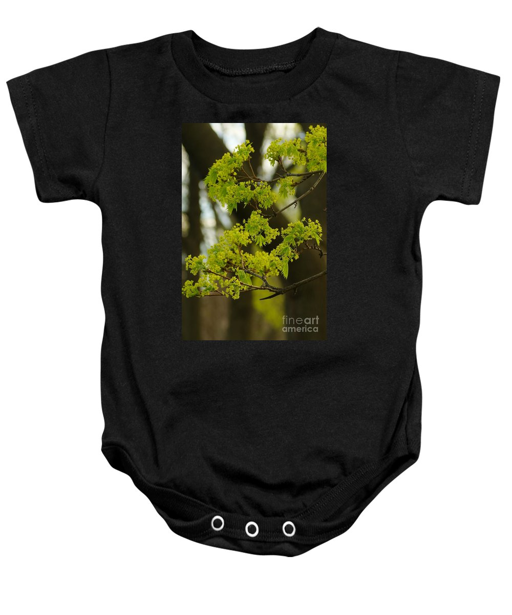 Trees Baby Onesie featuring the photograph Spring by Jeffery L Bowers