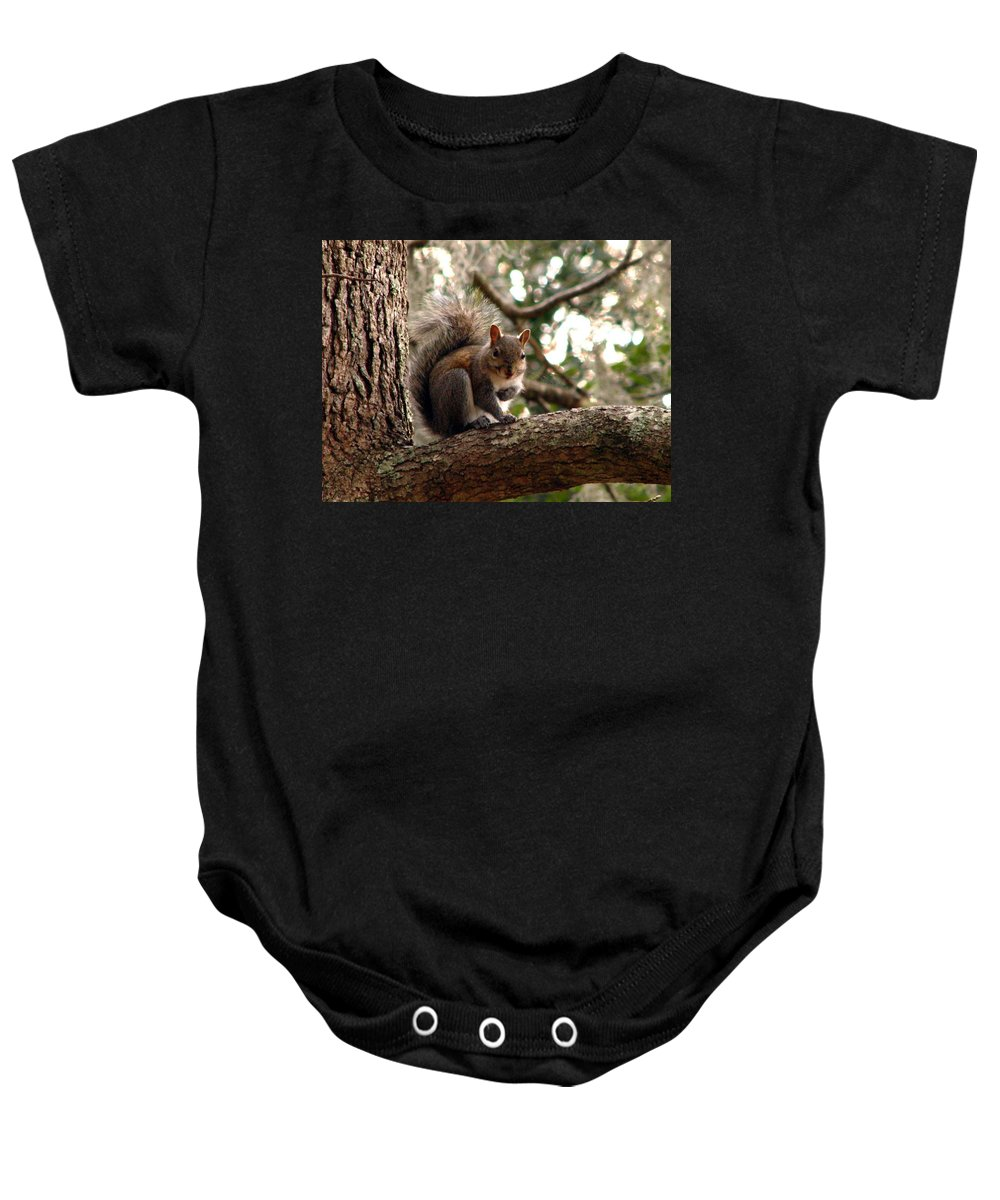 Squirrel Baby Onesie featuring the photograph Squirrel 8 by J M Farris Photography