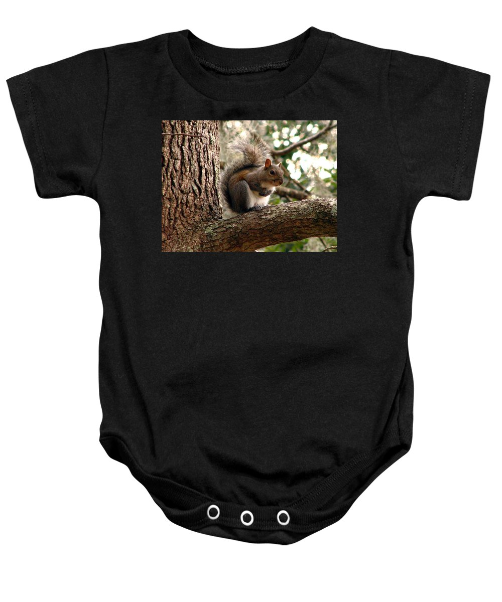 Squirrel Baby Onesie featuring the photograph Squirrel 9 by J M Farris Photography