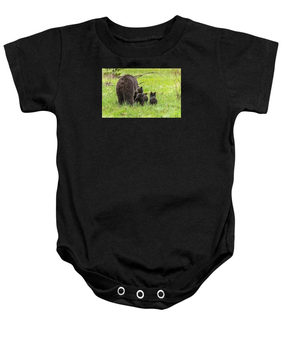 Bear Baby Onesie featuring the photograph Standing Guard by Yeates Photography