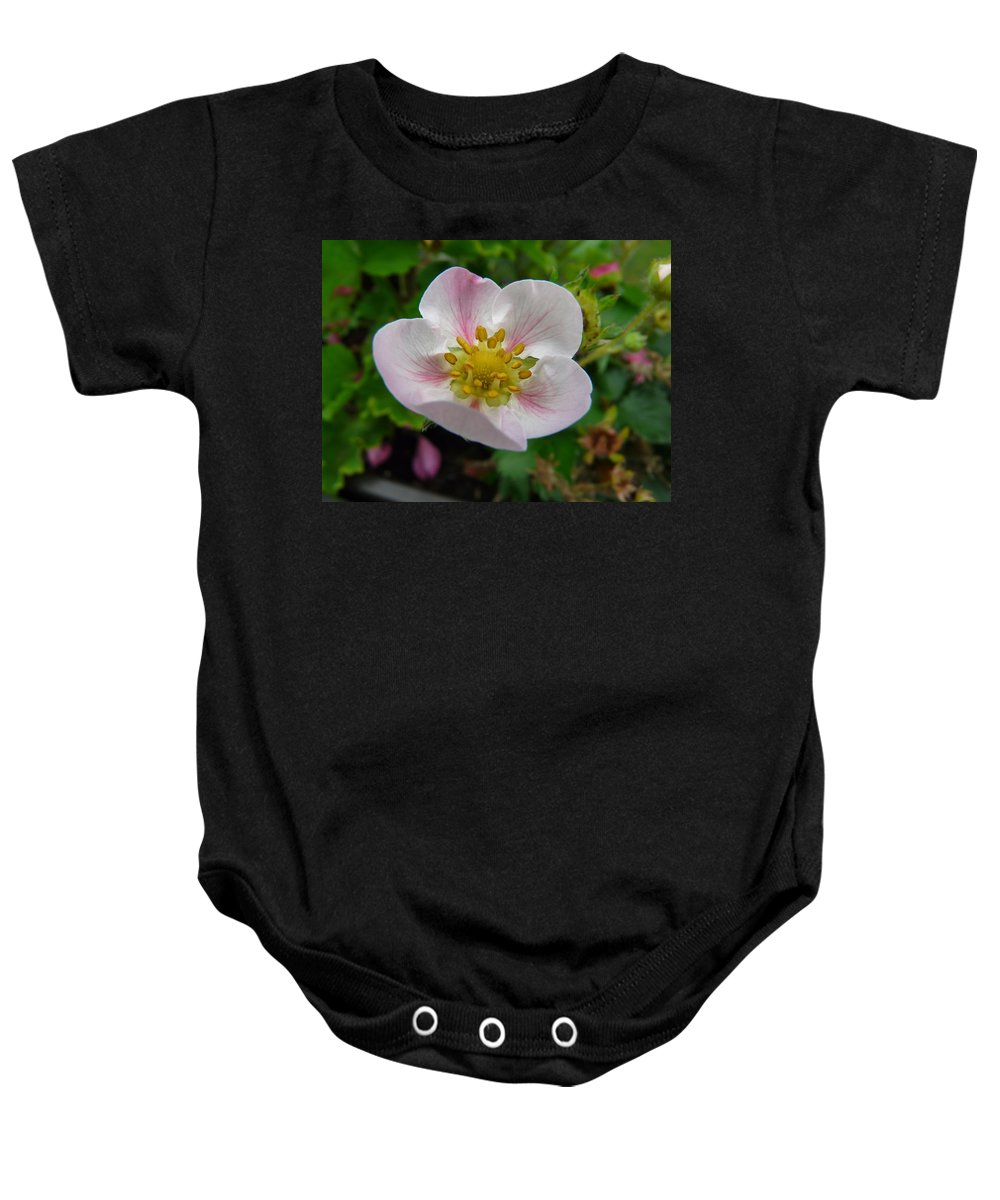 Plant Baby Onesie featuring the photograph Strawberry Blossom by Valerie Ornstein
