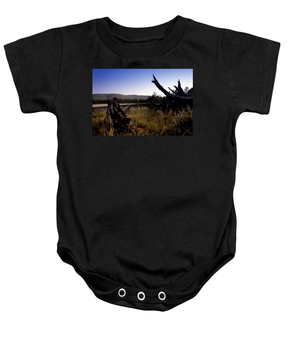 Nature Baby Onesie featuring the photograph Stumped By The Lake by John K Sampson