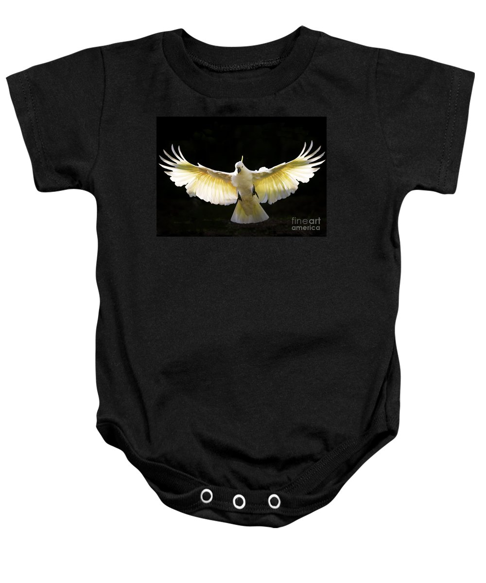 Sulphur Crested Cockatoo Australian Wildlife Baby Onesie featuring the photograph Sulphur Crested Cockatoo In Flight by Sheila Smart Fine Art Photography