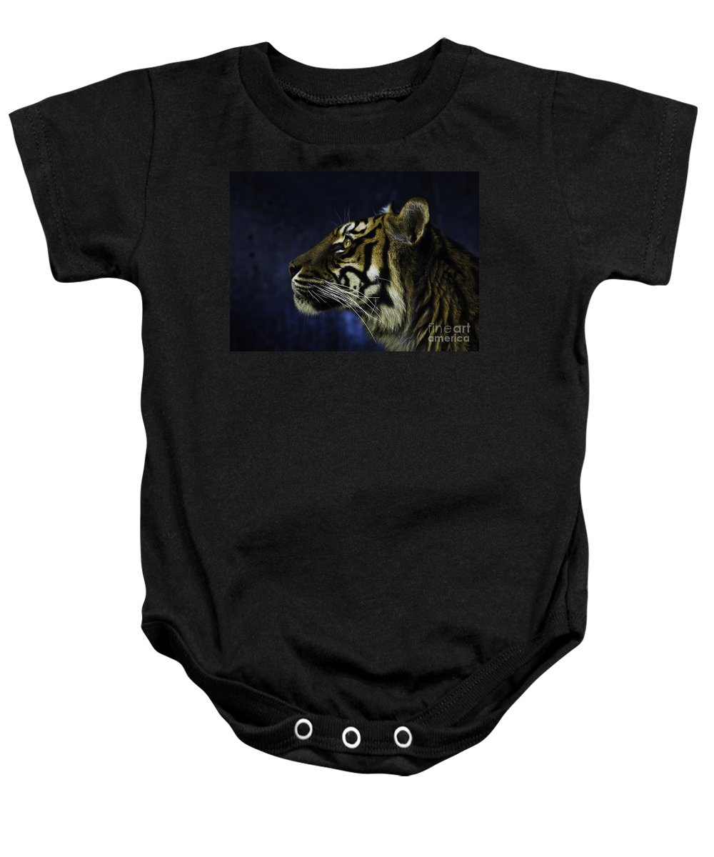 Sumatran Tiger Baby Onesie featuring the photograph Sumatran Tiger Profile by Sheila Smart Fine Art Photography