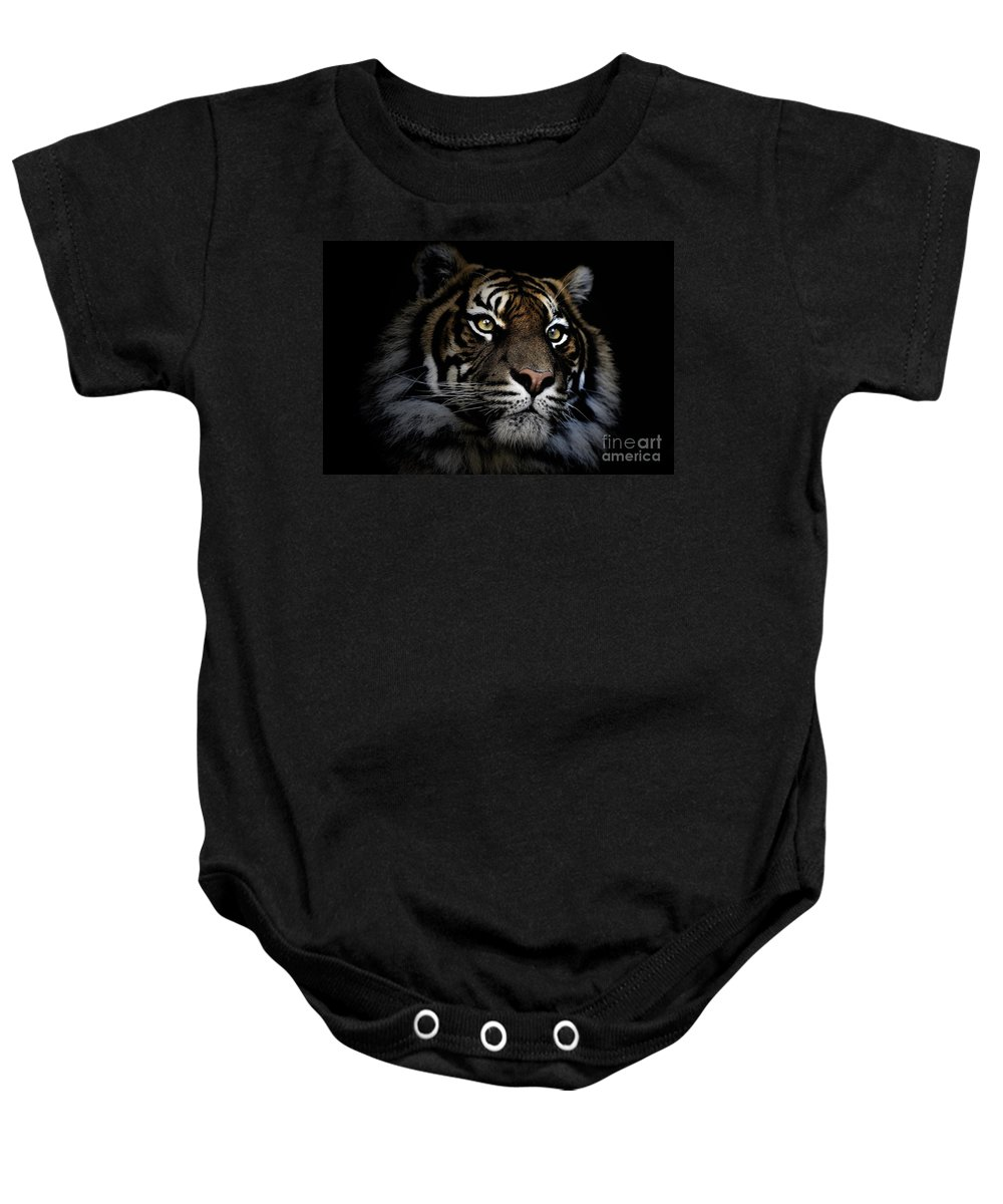 Sumatran Tiger Wildlife Endangered Baby Onesie featuring the photograph Sumatran Tiger by Sheila Smart Fine Art Photography