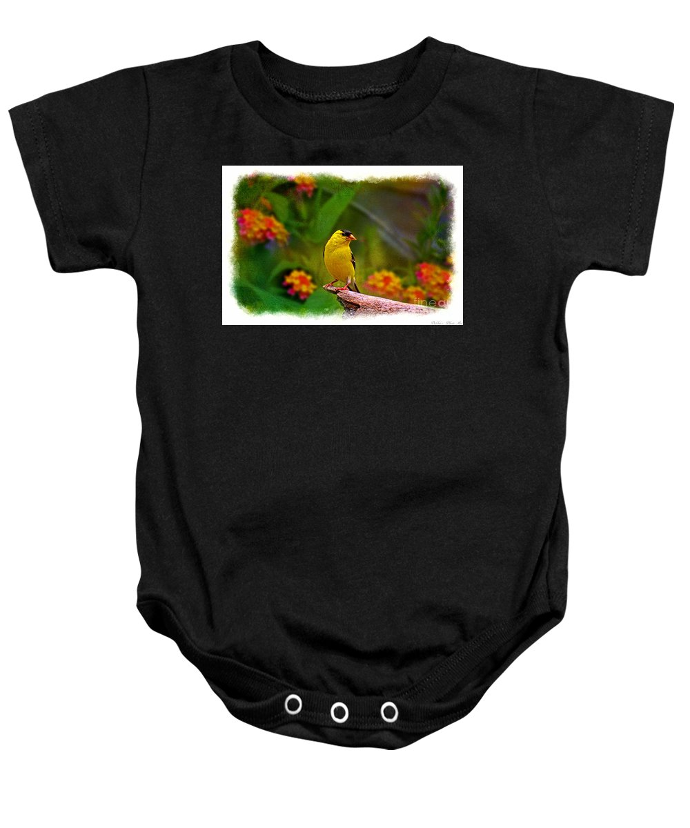 Avian Baby Onesie featuring the photograph Summer Goldfinch by Debbie Portwood