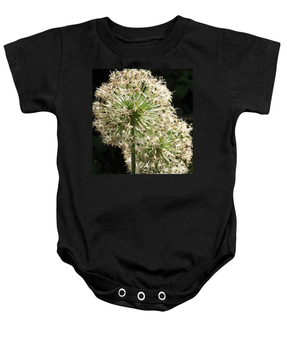 Flower Baby Onesie featuring the photograph Summer's Glow by Mike Norkin