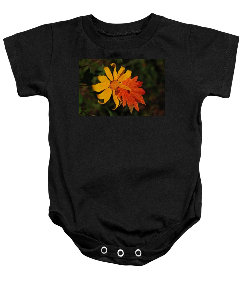 Pop Art Baby Onesie featuring the photograph Sun Flower And Leaf by Rob Hans
