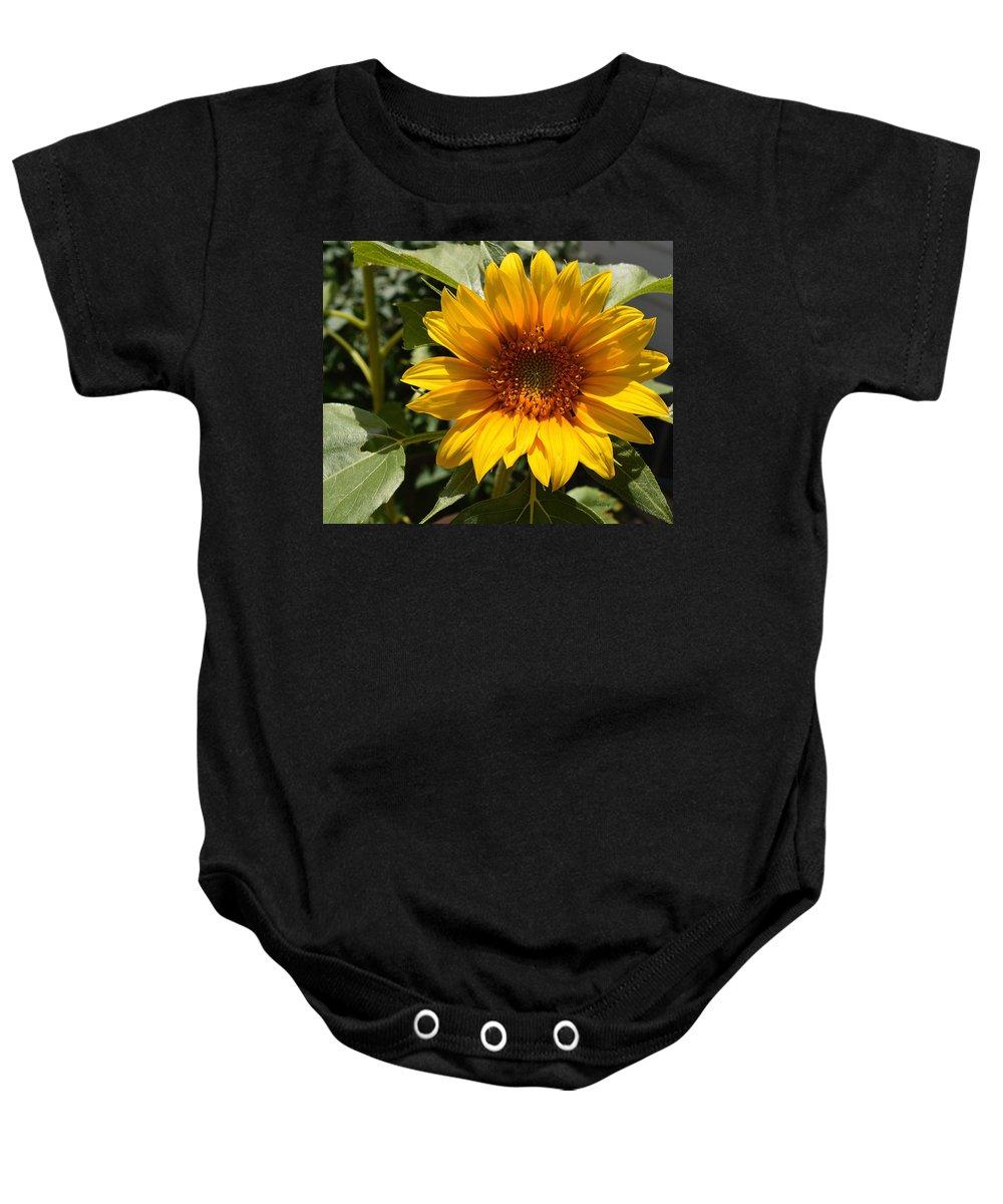 Sunflower Baby Onesie featuring the painting Sunflower Art- Summer Sun- Sunflowers by Kathy Symonds