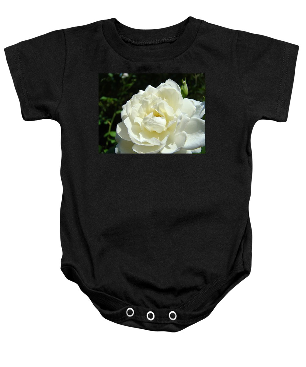 Rose Baby Onesie featuring the photograph Sunlit White Rose Art Print Floral Giclle Print Baslee Troutman by Baslee Troutman