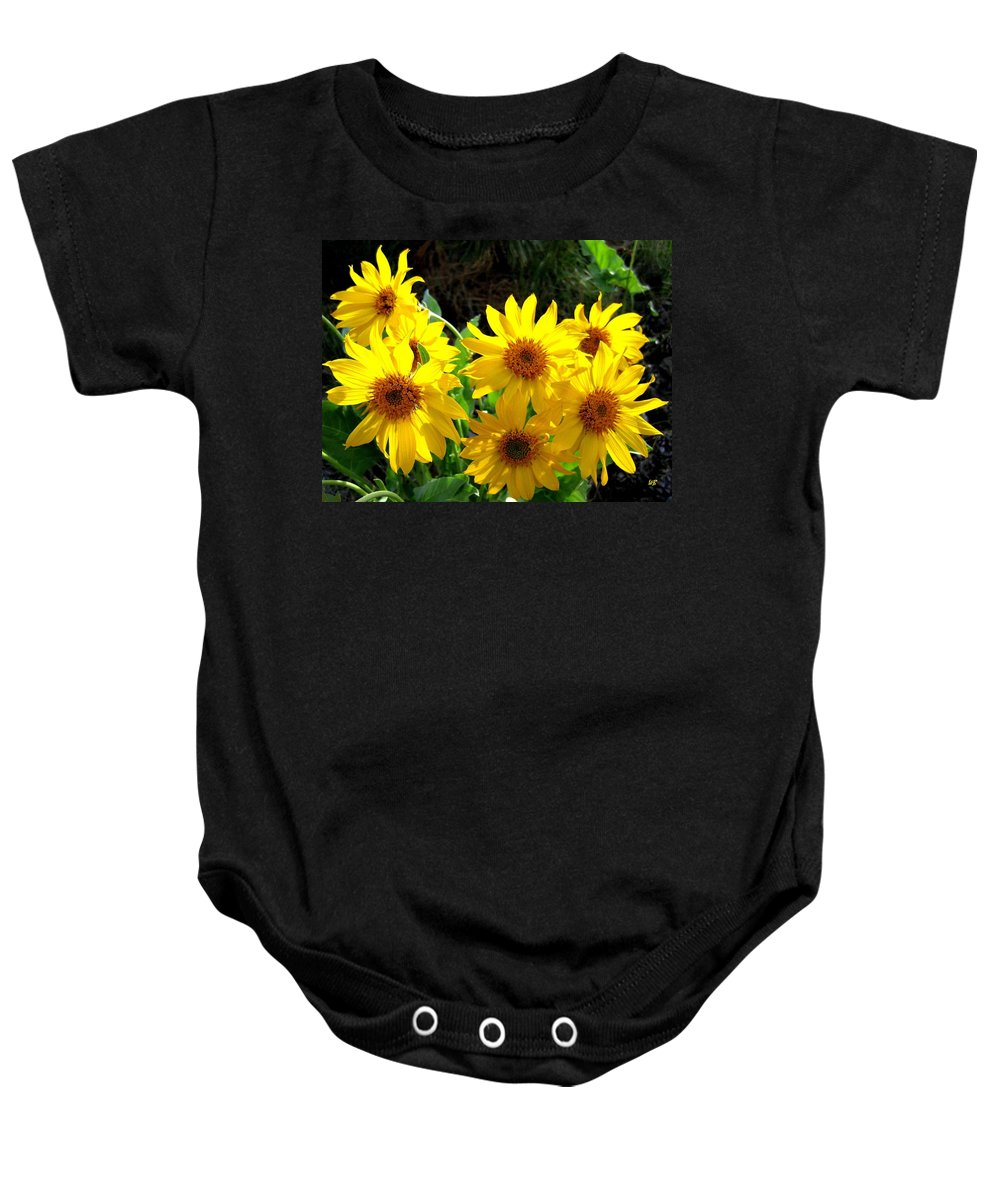 Wildflowers Baby Onesie featuring the photograph Sunlit Wild Sunflowers by Will Borden