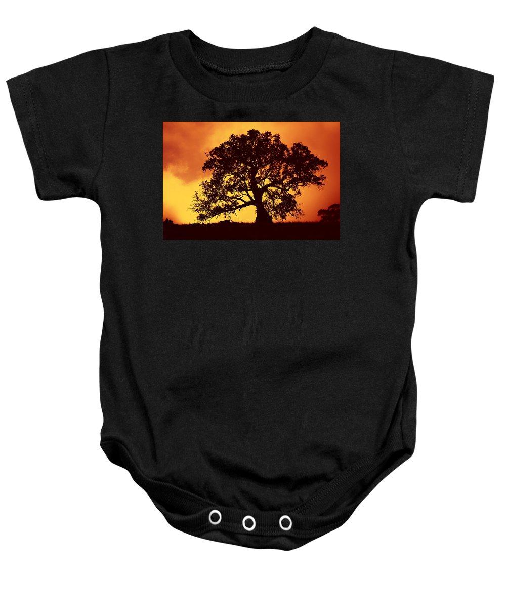 Gum Tree Baby Onesie featuring the photograph Sunrise Gum by Mike Dawson