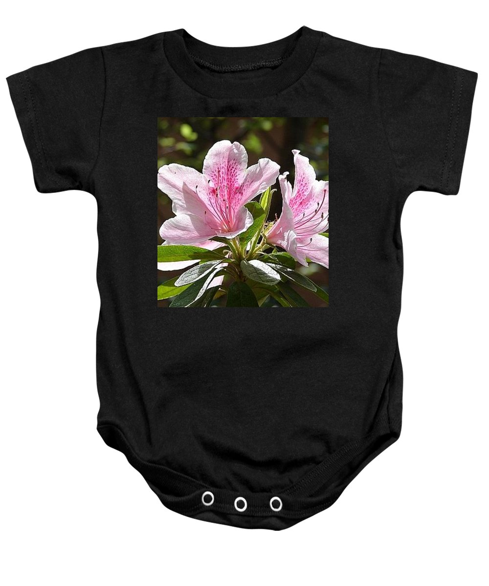 Lily Pinkgreen Pedals Leaves Baby Onesie featuring the photograph Sunshine by Luciana Seymour