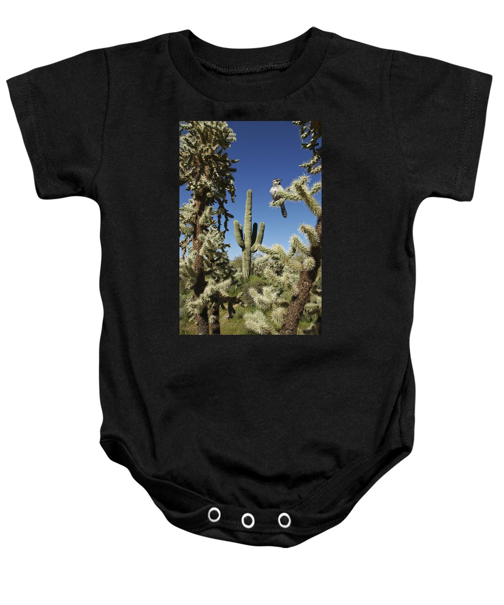 Saguaro Baby Onesie featuring the photograph Surrounded Saguaro Cactus Wren by Jill Reger