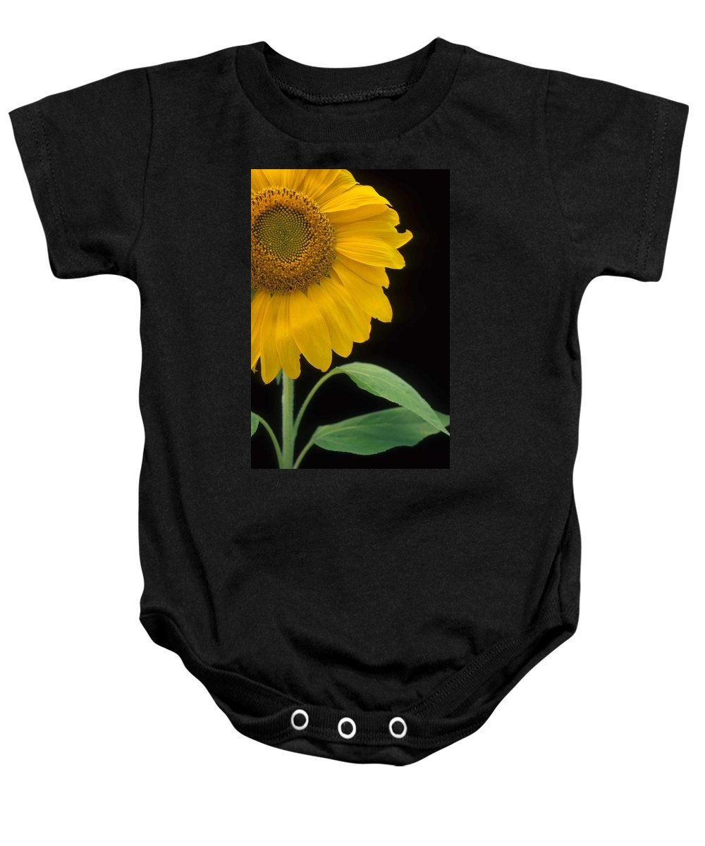 Sunflower Baby Onesie featuring the photograph Sussex County Gem by Laurie Paci