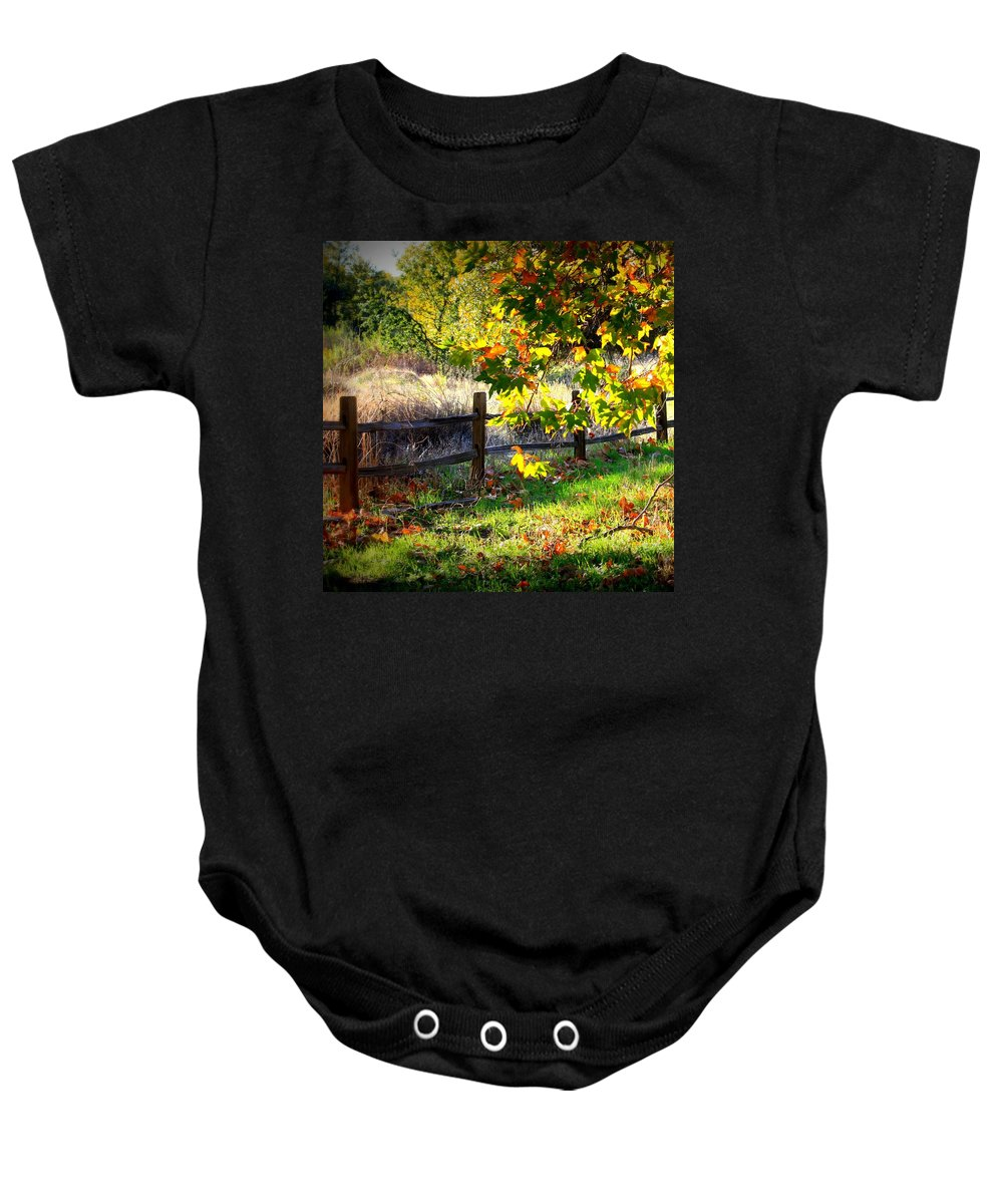 Fall Leaves Baby Onesie featuring the photograph Sycamore Grove Series 11 by Carol Groenen