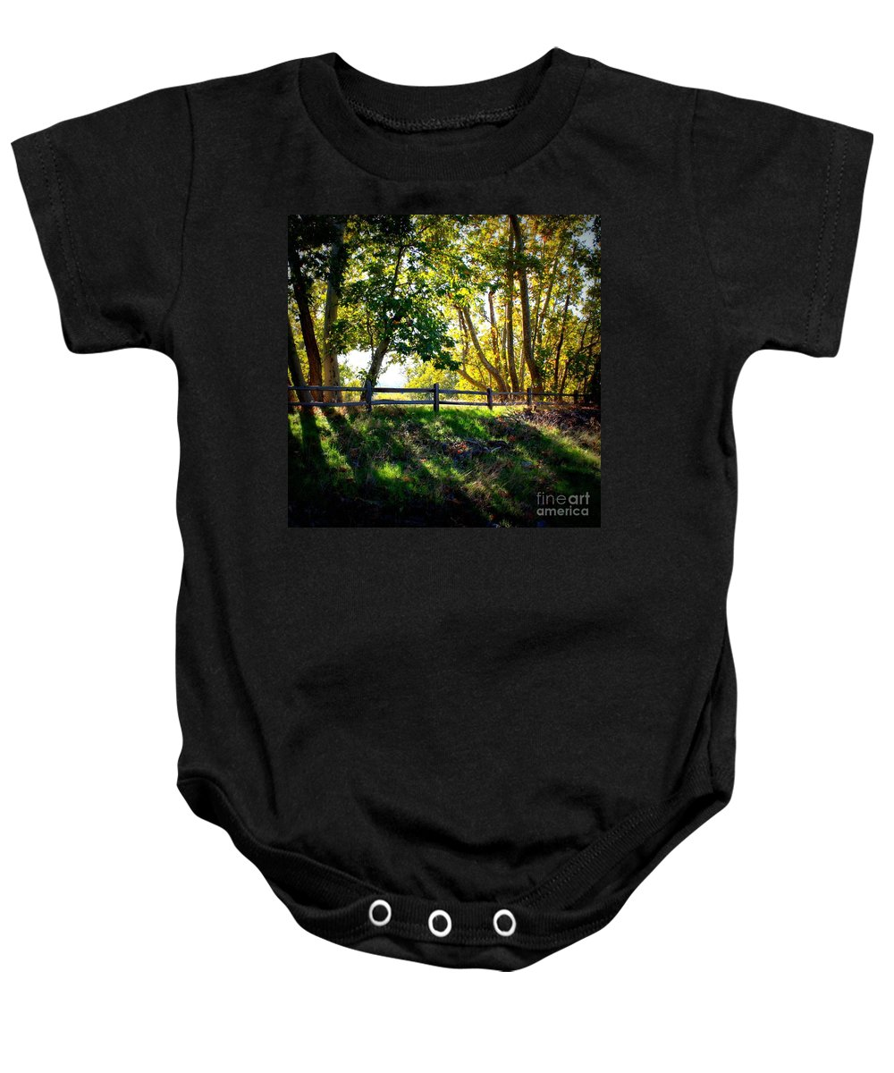 Fall Baby Onesie featuring the photograph Sycamore Grove Series 12 by Carol Groenen
