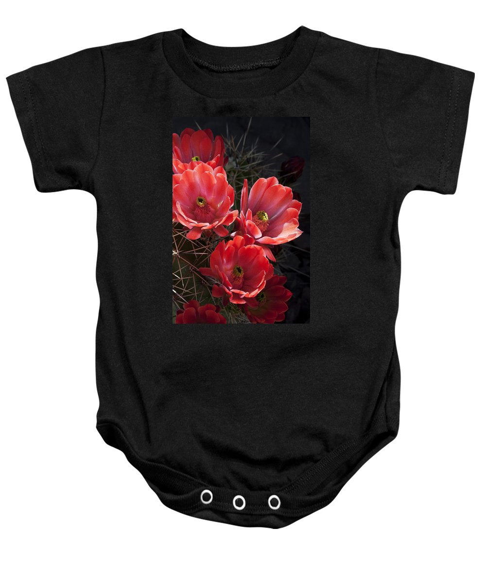 Blossoms Baby Onesie featuring the photograph Tangerine Cactus Flower by Phyllis Denton