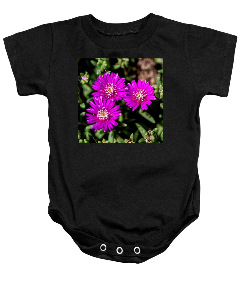 Flower Baby Onesie featuring the photograph Teeny Tiny Floral Wonders by John Haldane