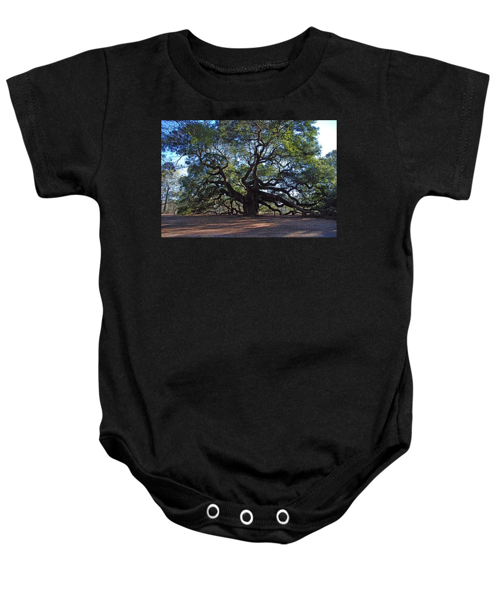 Photography Baby Onesie featuring the photograph The Angel Oak in Spring by Susanne Van Hulst