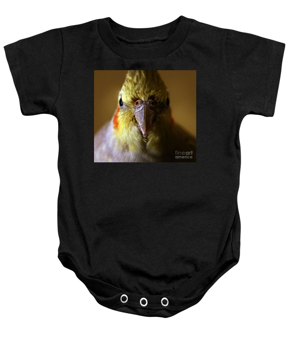 Cockatiel Baby Onesie featuring the photograph The Cockatiel by Angel Ciesniarska