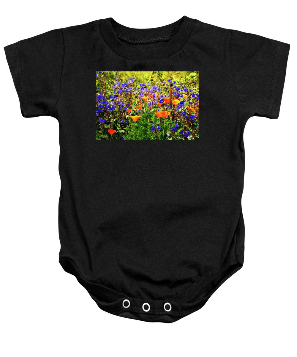 Arizona Baby Onesie featuring the photograph The Colors Of Spring by Saija Lehtonen