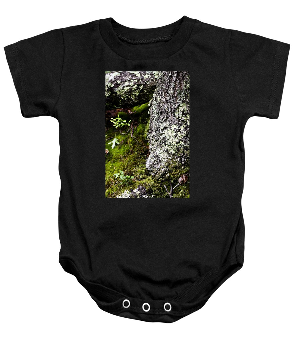 Moss Baby Onesie featuring the photograph The Forest Floor Bluestone State Park West Virginia by Teresa Mucha