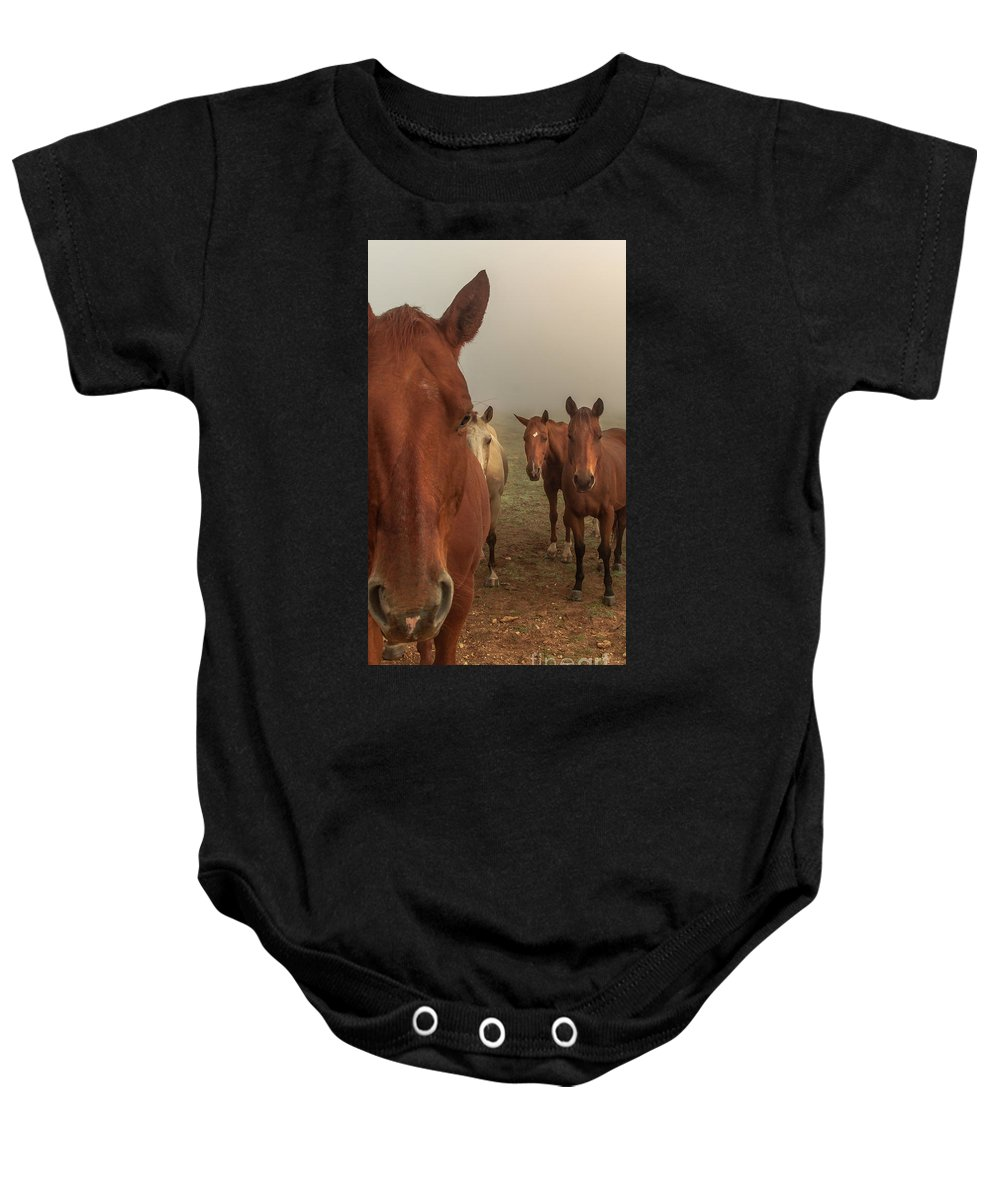 Animal Baby Onesie featuring the photograph The Gauntlet - Horses by Robert Frederick