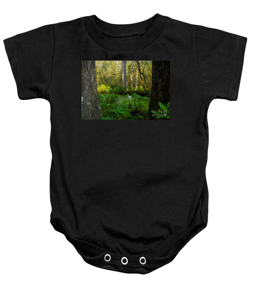Corkscrew Swamp Baby Onesie featuring the photograph The Great Corkscrew Swamp by David Lee Thompson