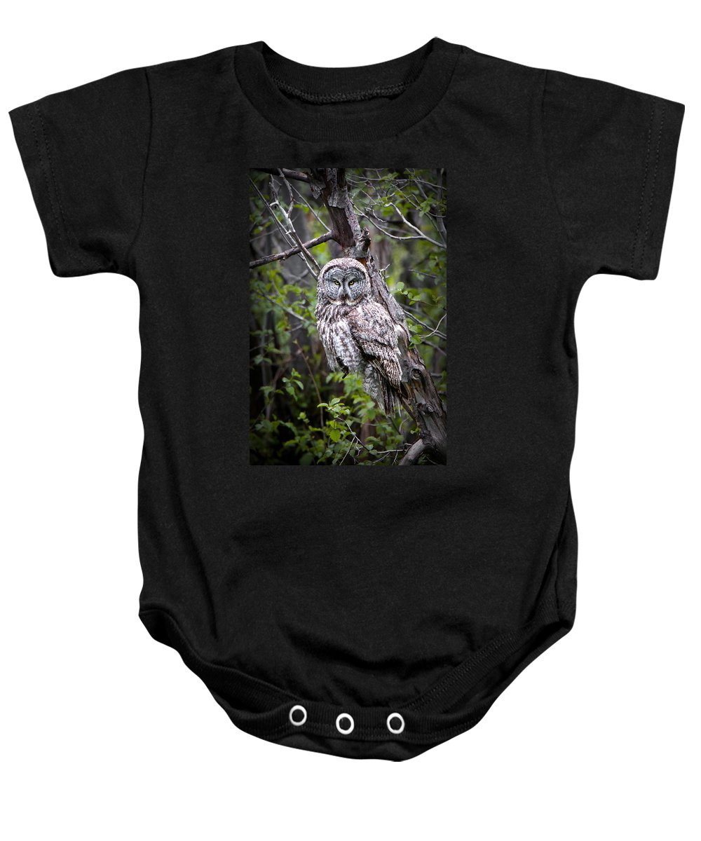 Great Gray Owl Baby Onesie featuring the photograph The Great Gray by Ryan Smith