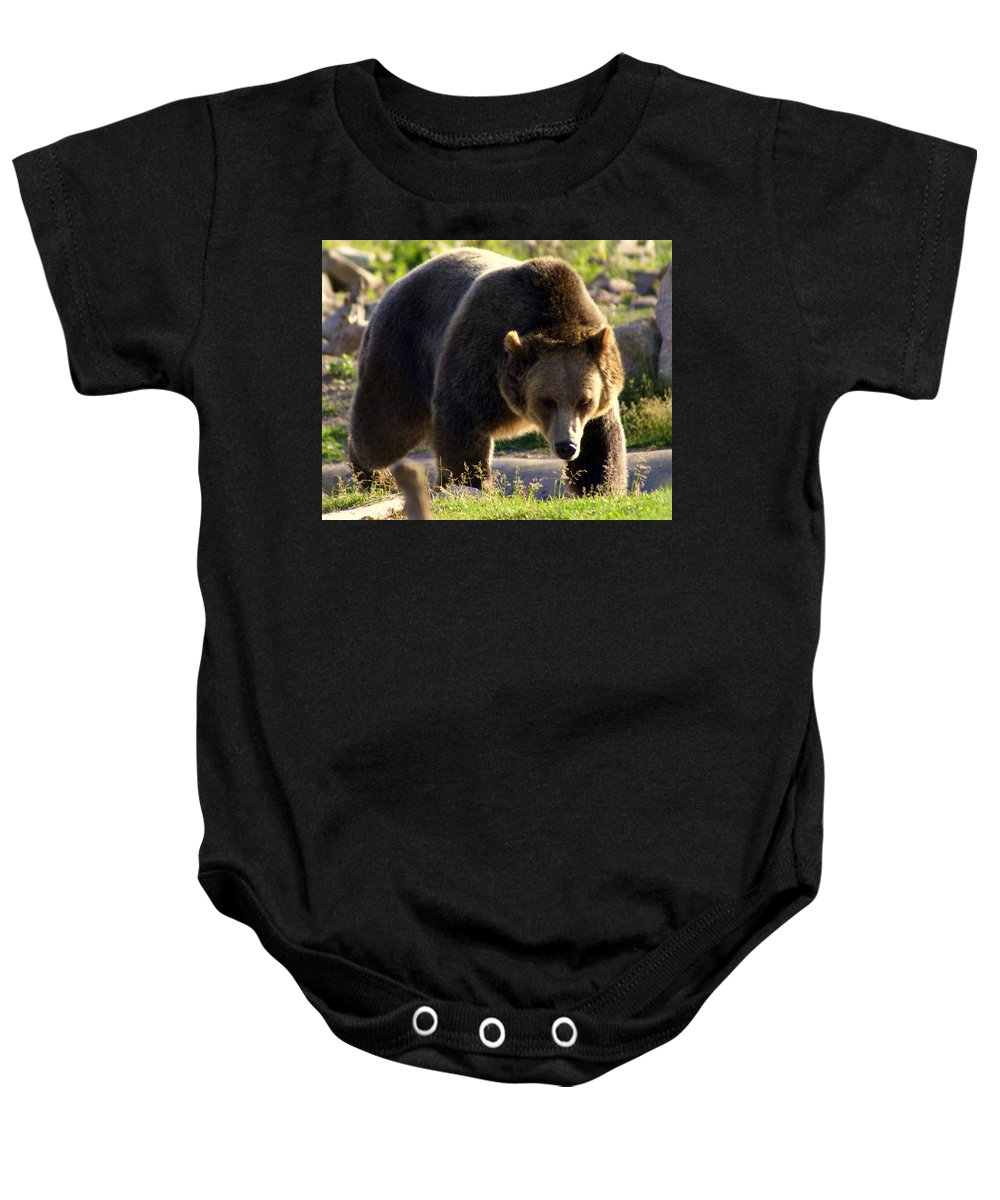 Grizzly Bear Baby Onesie featuring the photograph The Grizz by Marty Koch