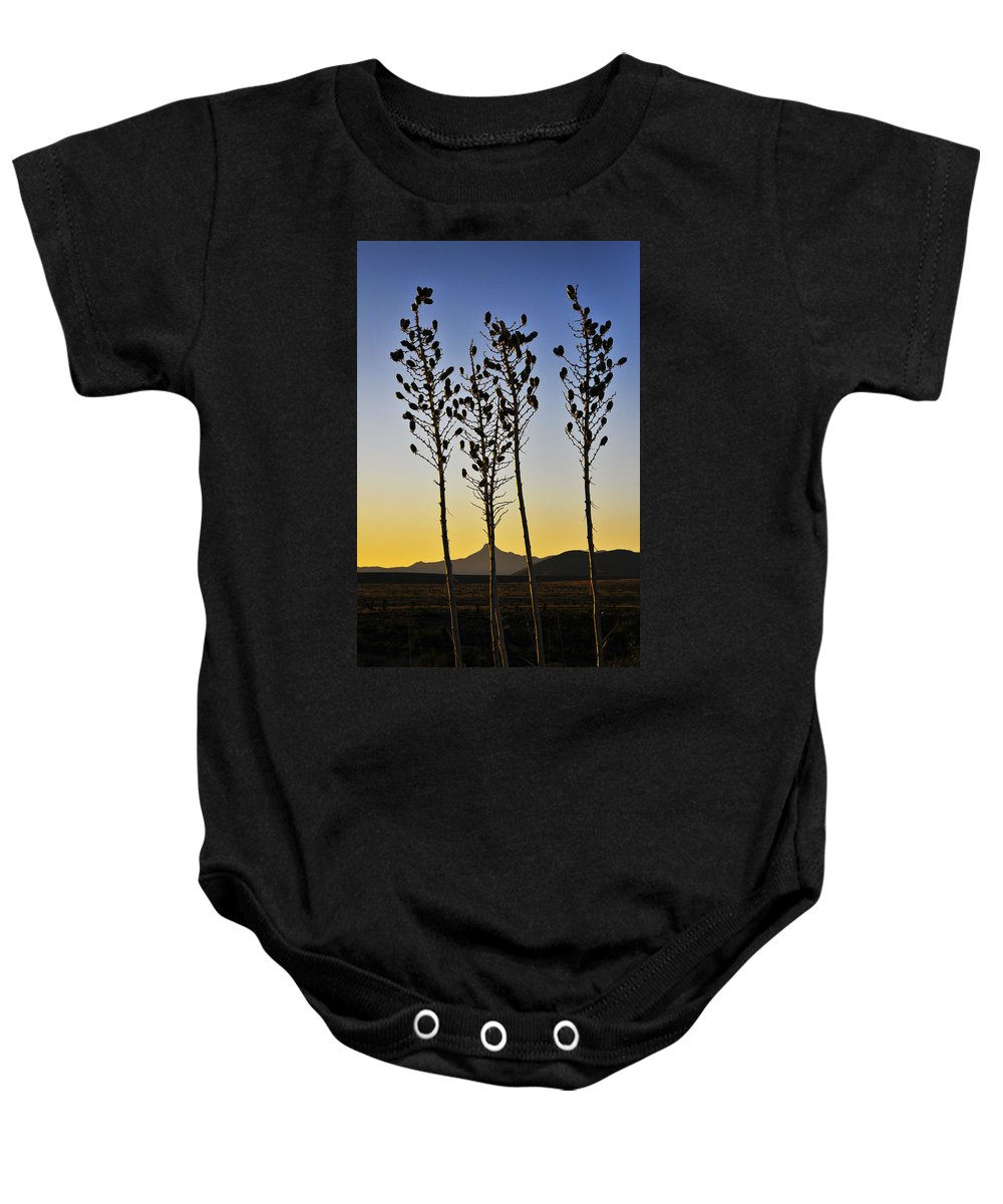 The Guild Baby Onesie featuring the photograph The Guild by Skip Hunt