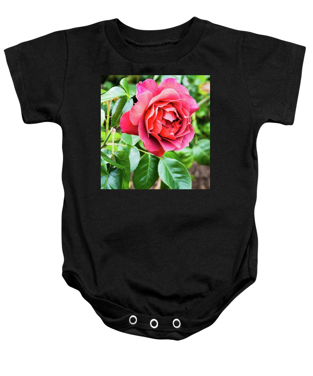 Seattle Baby Onesie featuring the photograph The Hot Cocoa Red Rose by Robert Briggs