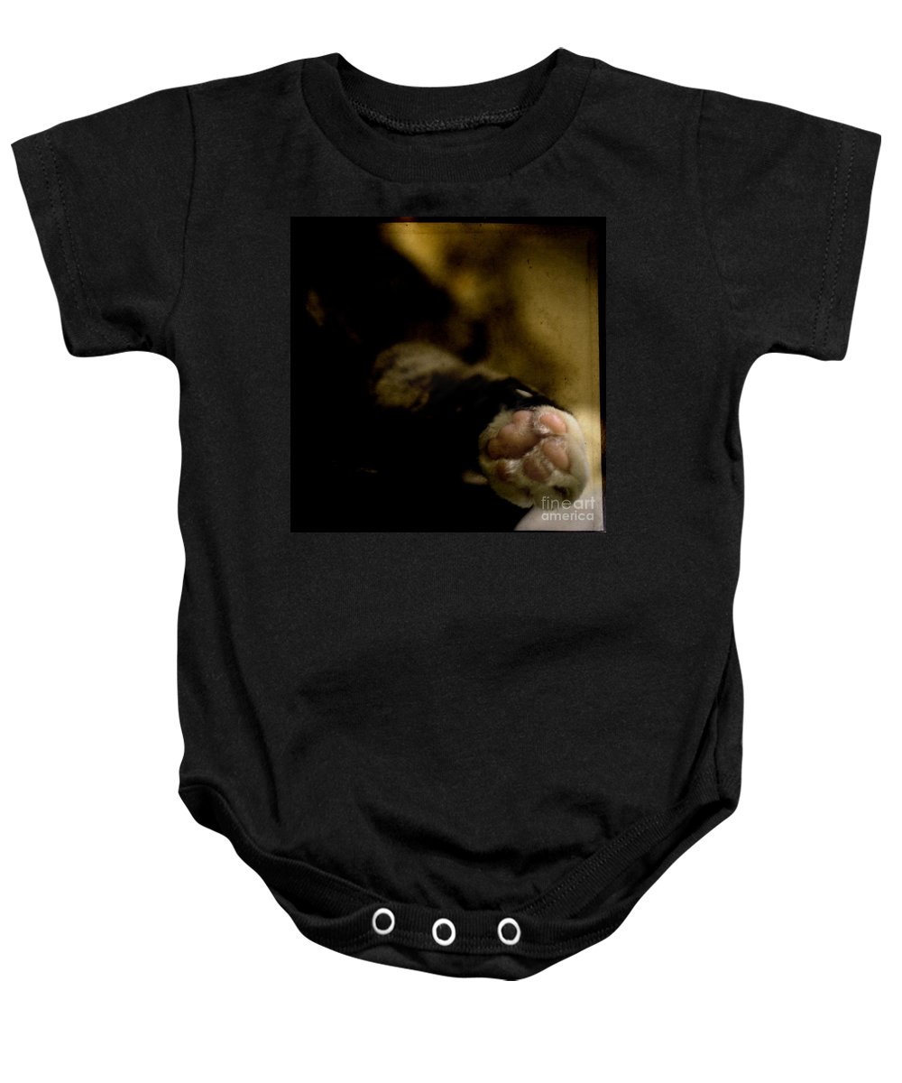 Cat Baby Onesie featuring the photograph The Paw by Angel Ciesniarska