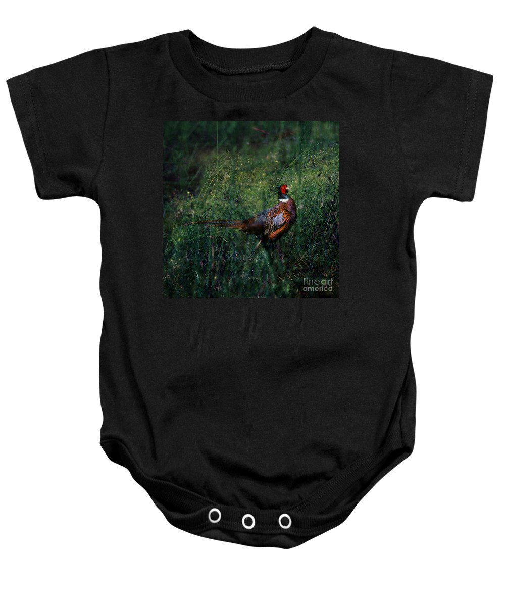 Pheasant Baby Onesie featuring the photograph The Pheasant In The Autumn Colors by Angel Ciesniarska