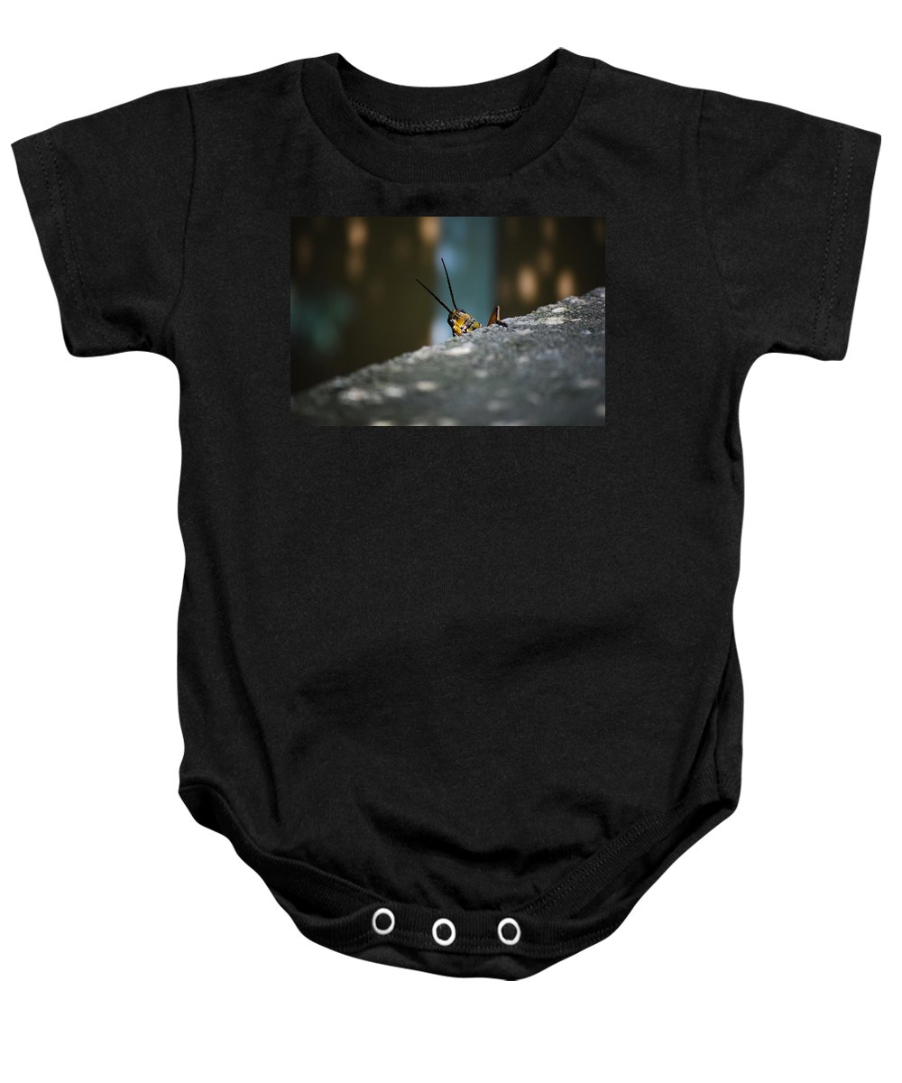 Bugs Baby Onesie featuring the photograph The Real Hopper by Robert Meanor