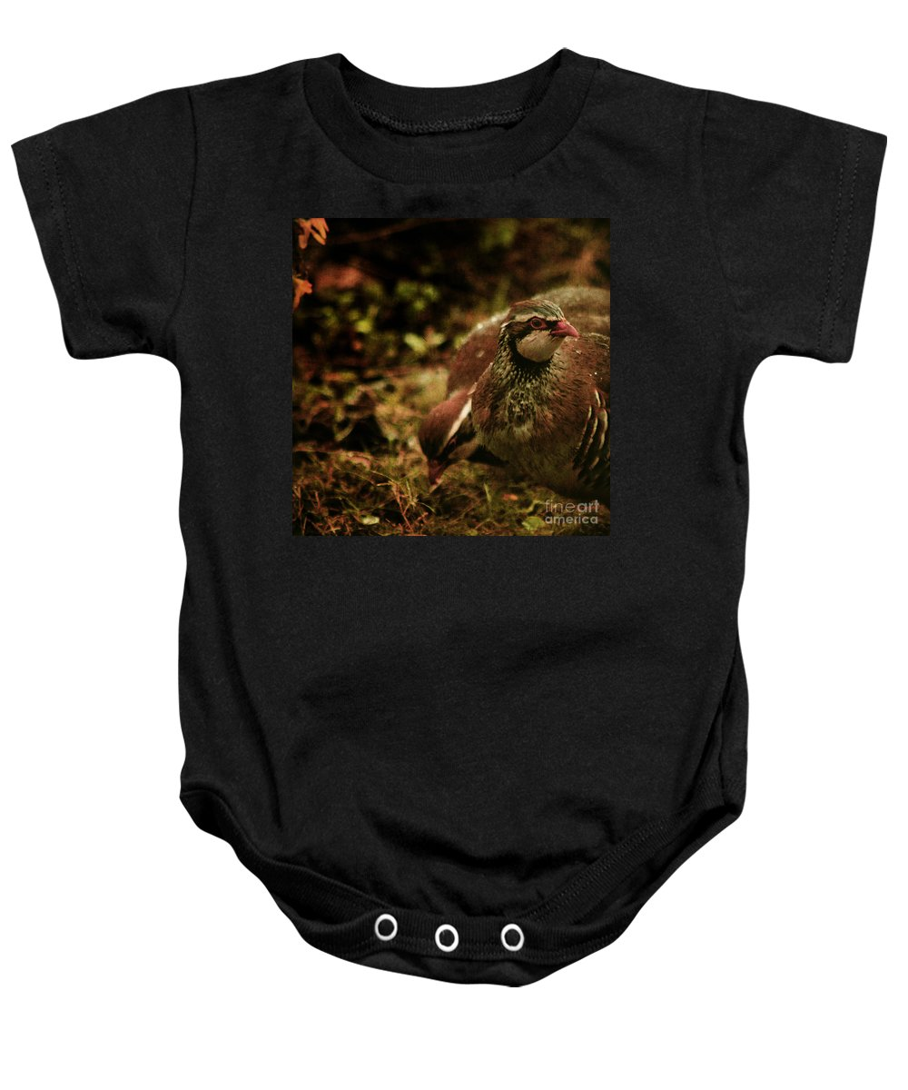 Partridge Baby Onesie featuring the photograph The Redlegged Partridges by Angel Ciesniarska