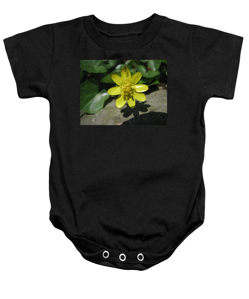 Insect Baby Onesie featuring the photograph The Shadow by Donna Brown