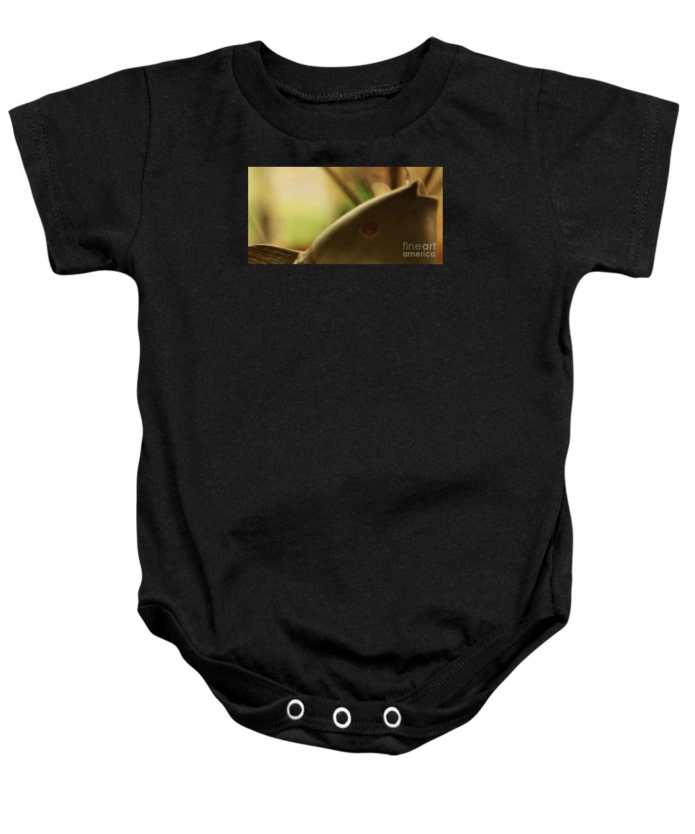 Abstract Baby Onesie featuring the photograph The Storyteller by Linda Shafer