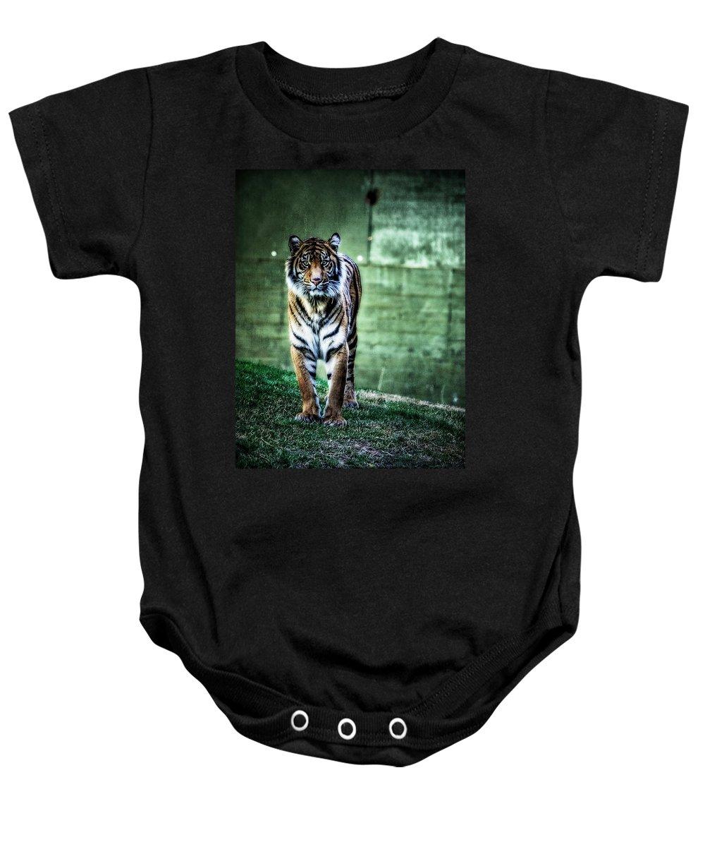 Sumatran Tiger Baby Onesie featuring the photograph The Tigress by Saija Lehtonen