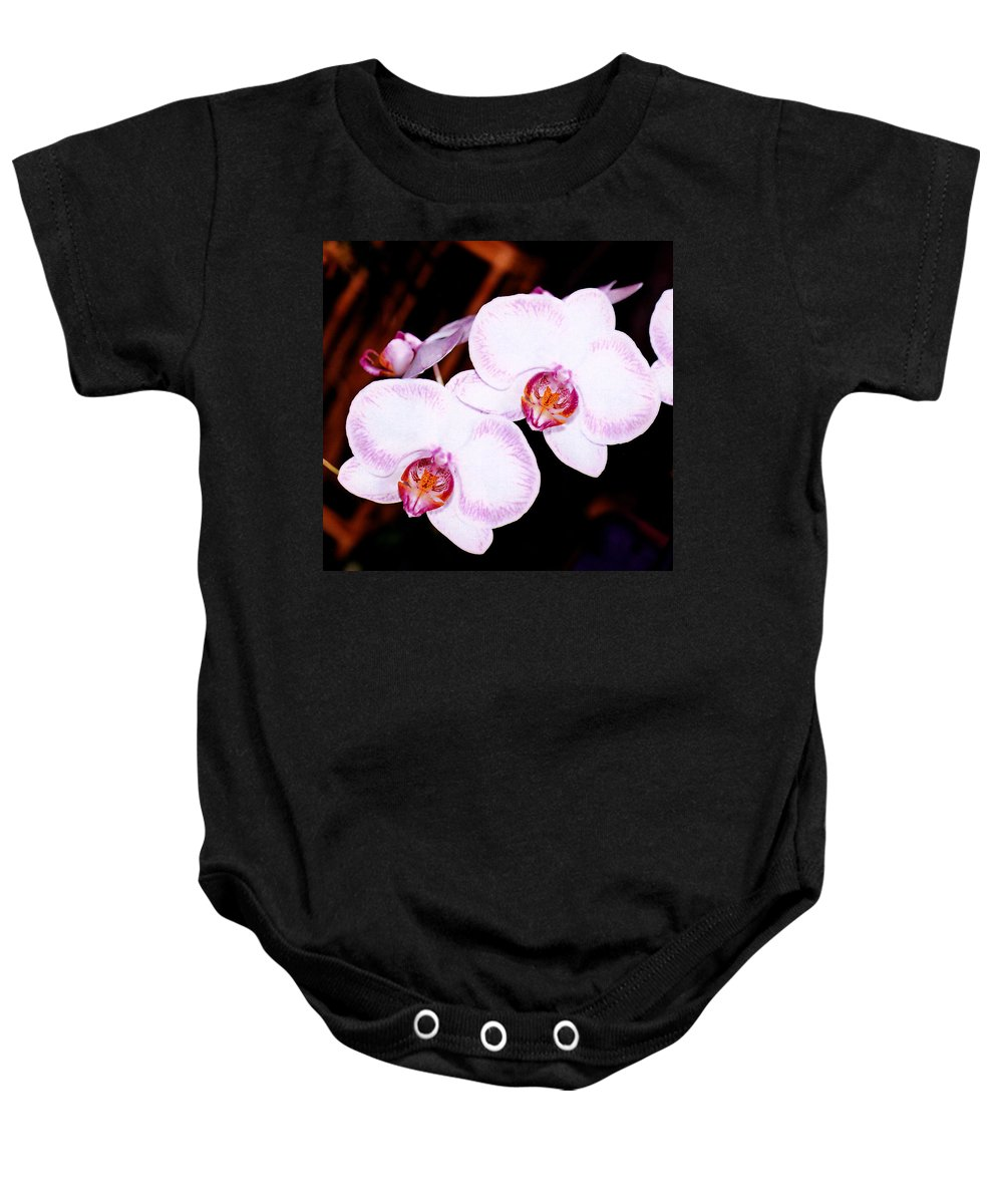Nature Baby Onesie featuring the photograph The White Twins by Susanne Van Hulst