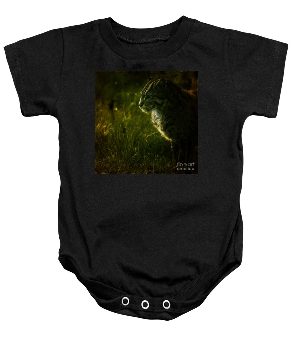Zoo Baby Onesie featuring the photograph The Wild Cat by Angel Ciesniarska