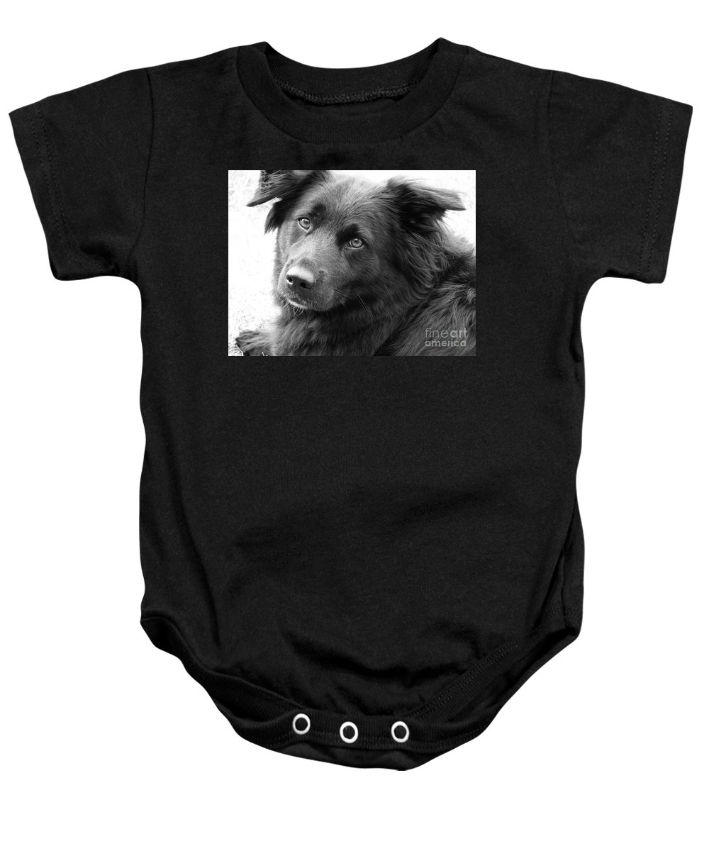Dog Baby Onesie featuring the photograph Thinking by Amanda Barcon