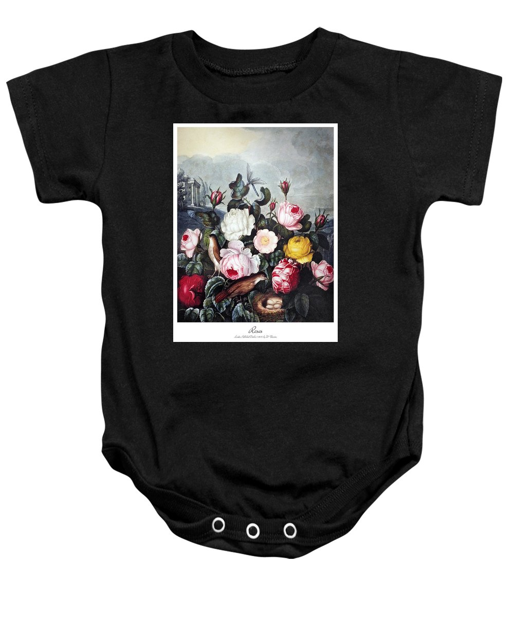 1805 Baby Onesie featuring the photograph Thornton: Roses by Granger