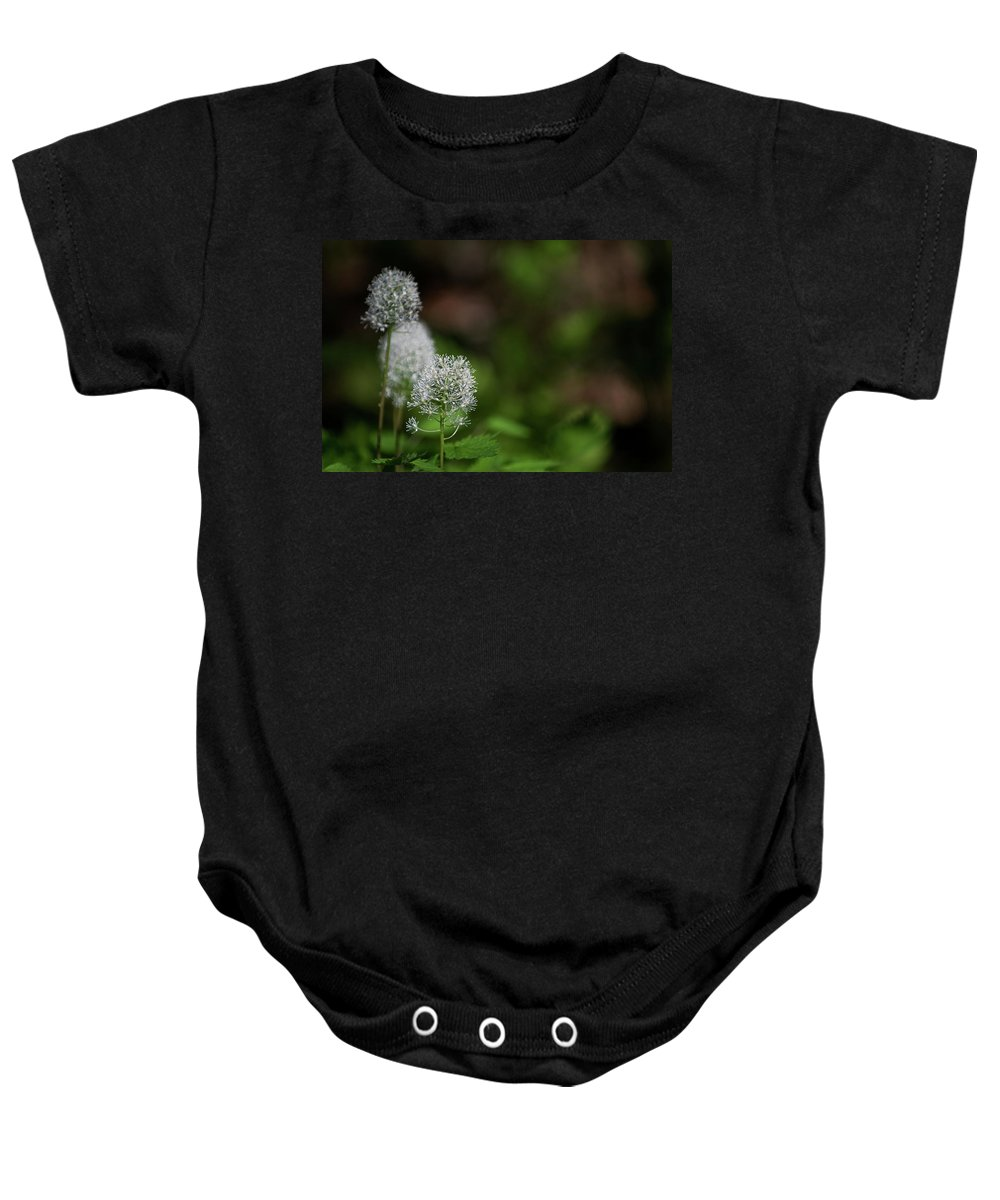macro Photography Baby Onesie featuring the photograph Three Of A Kind by Paul Mangold