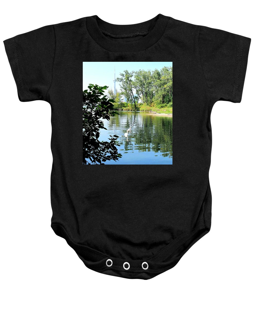 Swans Baby Onesie featuring the photograph Three Toronto Swans by Ian MacDonald