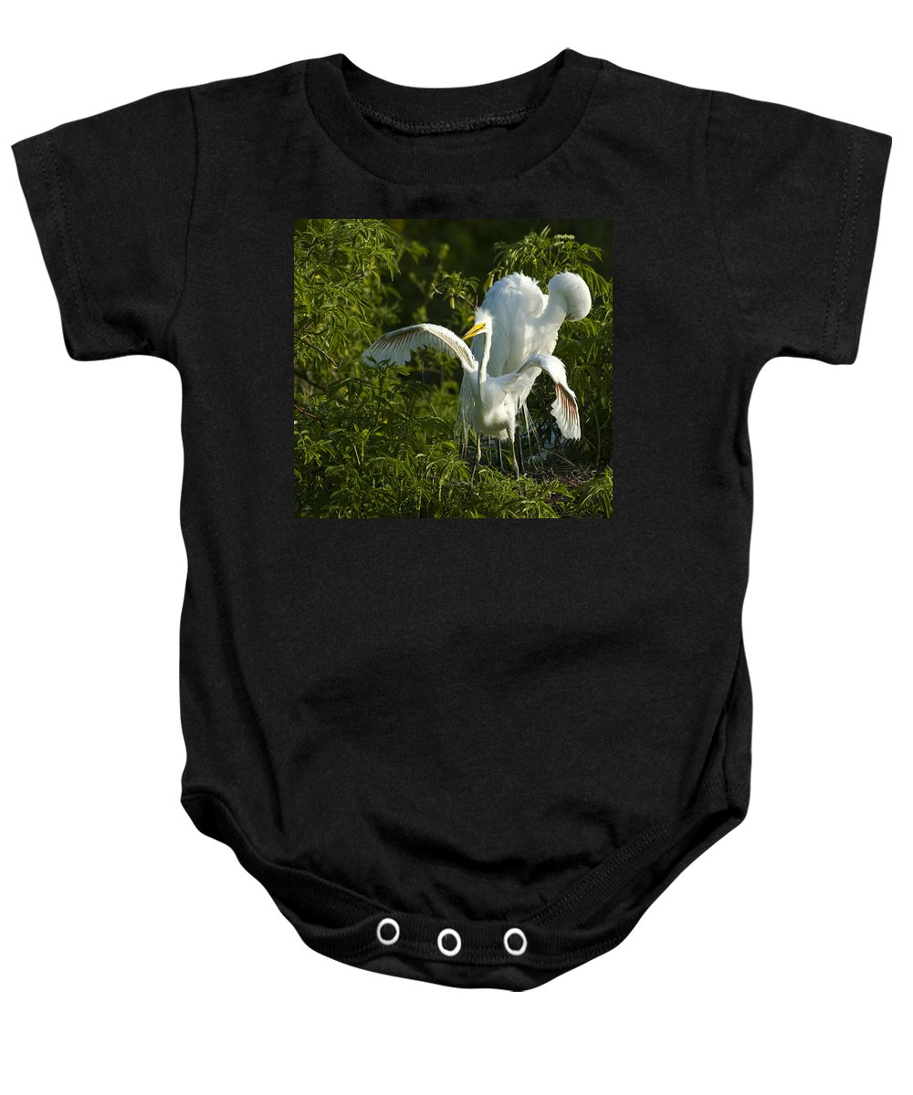 Egret Baby Onesie featuring the photograph Time To Fly by Carolyn Marshall